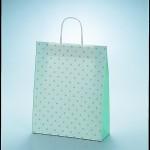 ラッピーバッグ №2 水玉グリーン